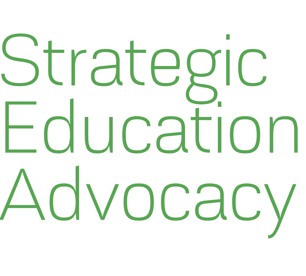 Strategic Education Advocacy